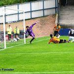 Goal 3 Stewart